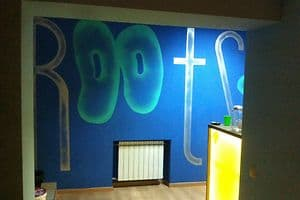 Hotels Kyiv. Hotel Roots Kiev Hostel