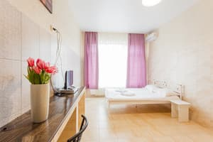 Hotels Kyiv. Hotel Pechersk House