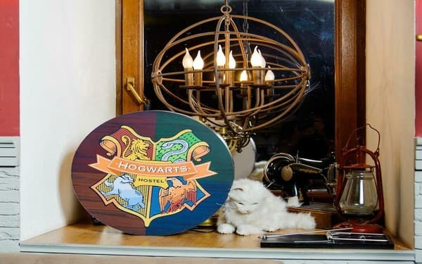 Hostel Hogwarts Hostel, Odesa: photo, prices, reviews