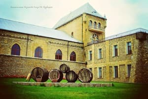 Hotels  city Kherson and region. Hotel Winery of duke P.N.Trubetskoy