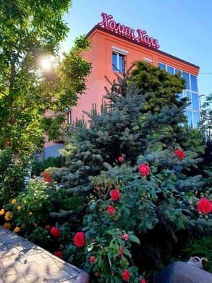Boarding house Holin Holl,  Berdiansk: photo, prices, reviews