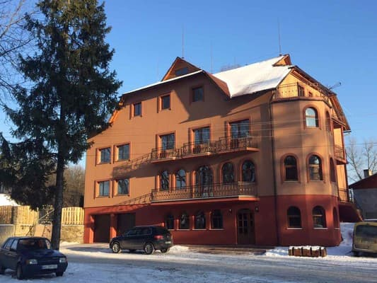 Mini hotel Franz, Yasinya: photo, prices, reviews