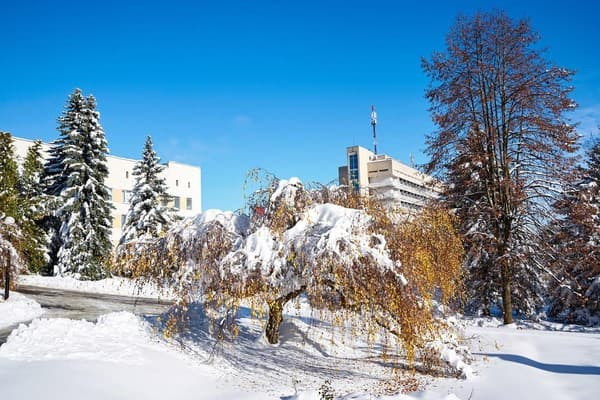 Sanatorium Kryshtalevyi Palats, Truskavets: photo, prices, reviews