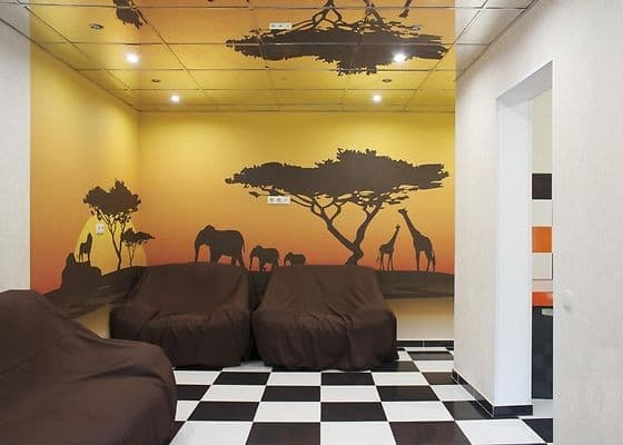 Hostel Zoo, Kyiv: photo, prices, reviews
