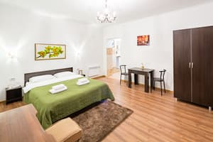 Hotels . Hotel One-room apartment with double bed.