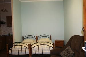Hotels . Hotel Double room with double bed and sofa.