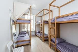 Hotels . Hotel Bed in Female Dormitory 6-bed room .