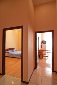 Hotels . Hotel One-Room Apartment on Mykhailivska Lane, 9 B.