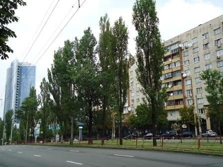 Apartment Apartment on Lesi Ukrainky Boulevard, 12, Kyiv: photo, prices, reviews