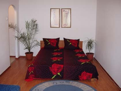 Apartment Apartment One-Room Apartment on Peremohy Avenue, 23, Kyiv: photo, prices, reviews