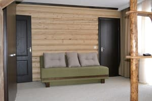 Hotels . Hotel One-room Suite №205.