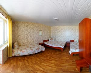 Hotels . Hotel Economy for 4 people (Topol-3).