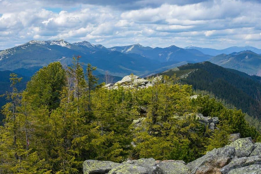 Реферат про горы карпаты 3342