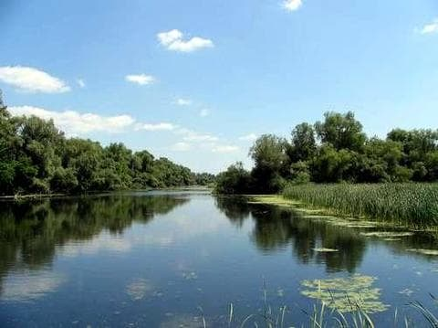Дунайский биосферный заповедник в Вилково