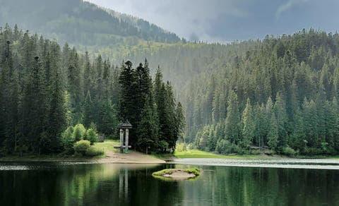 Карпаты. Озеро Синевир